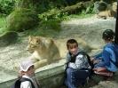zoo_5