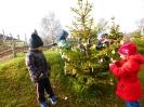 Vánoce v lese