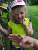 Návštěva u včelaře, červen 2021